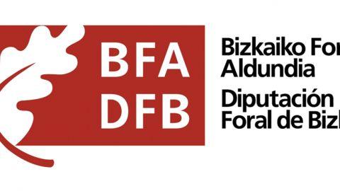 LAN BERRI – Subvención de Diputación Foral de Bizkaia para la contratación de personas desempleadas