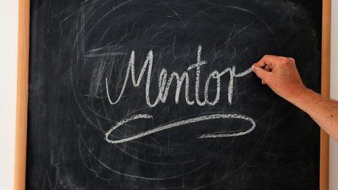 Lagunduko  zaituen  eskarmentudun  gidaria:  Gaztenpresaren  Mentoring  programa