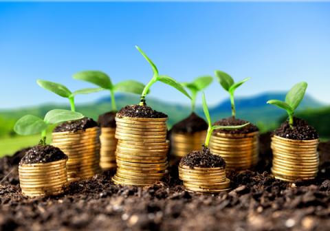 Capital riesgo, ¿qué es y por qué puede interesarme?
